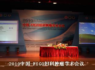 中国学术在线会议_2010中国—FIGO妇科肿瘤学术会议_妇产科在线